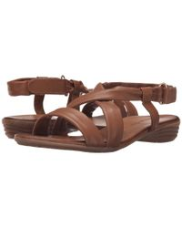 Tamaris - Brown Pepa 28130-26 - Lyst