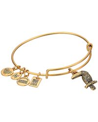 ALEX AND ANI - Metallic Team Usa Toucan Bangle - Lyst