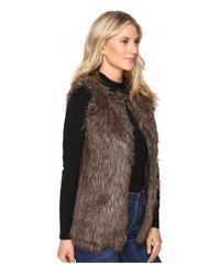 Brigitte Bailey Brown Whist Faux Vest