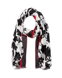 Calvin Klein - Graphic Floral Border Scarf (black) Scarves - Lyst