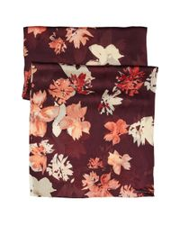 Vince Camuto | Multicolor Brushed Floral Oblong Scarf | Lyst