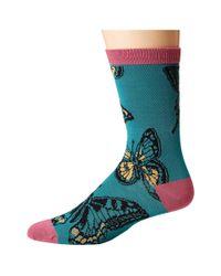 Socksmith - Blue Butterflies - Lyst