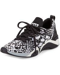 Ash | Hit Python-print Sneaker | Lyst