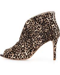 Vc Signature Ronan Leopard Print Calf Hair Bootie - Lyst