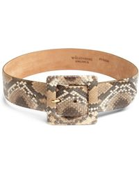 W. Kleinberg Python & Leather Belt - Lyst