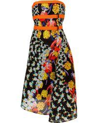 Peter Pilotto Printed Bek Dress - Lyst