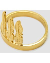 Alice Eden - Feather Chief Ring Brass 14k Gold Fill - Lyst