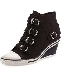 75ccc90d570e Ash - Genialbis Buckled Wedge Sneaker - Lyst