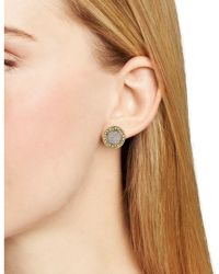 ABS By Allen Schwartz - Two Tone Stud Earrings - Lyst