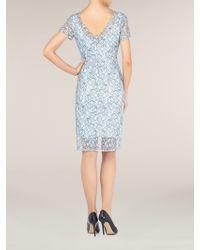 Alexon - Lace Dress - Lyst