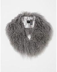 Asos Gray Mongolian Collar - Lyst