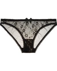 L'agent By Agent Provocateur Monica Embroidered Tulle Briefs - Lyst