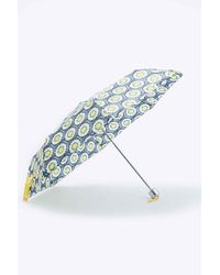 Urban Outfitters - Daisy Umbrella - Lyst