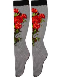 Dolce & Gabbana - Embroidered Tulle Socks - Lyst