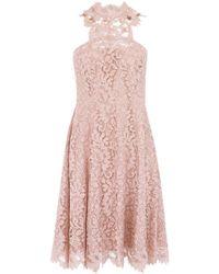 Coast Lulla Lace Dress - Lyst