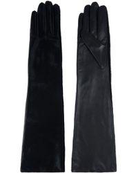Amanda Wakeley Morie Long Calfskin Gloves - Lyst