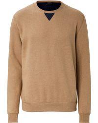 Jil Sander Cotton Sweatshirt - Lyst