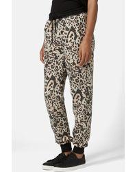 Topshop Leopard Print Brushed Jogger Pants brown - Lyst
