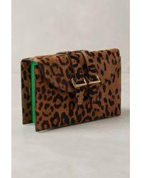 Meli' Melo' Cheetah Box Clutch - Lyst