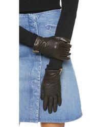 Mackage - Nira Gloves - Black - Lyst