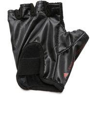 adidas By Stella McCartney - Studio Gloves - Black/Scarlet Red - Lyst