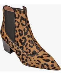 Tabitha Simmons Chelsea Leopard Haircalf Bootie brown - Lyst