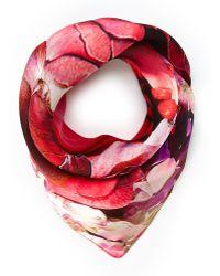 Roberto Cavalli Coral Floral Silk Scarf - Lyst