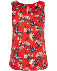 Oasis Tropical Bird Vest Top - Lyst