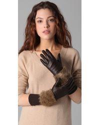 Club Monaco - Carol Gloves - Lyst