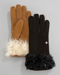 Ugg Shearling-cuff Gloves - Lyst