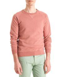 Shipley & Halmos - Raglan Sweatshirt - Lyst