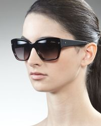 Lanvin Shiny Havana Sunglasses - Lyst