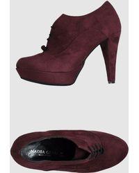 Nadia Grilli Shoe Boots - Lyst