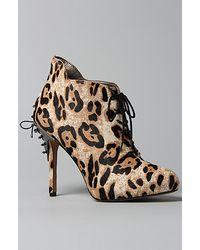 Sam Edelman The Elsa Shoe in Snow Leopard Brahma Hair - Lyst