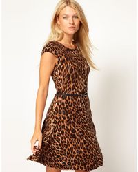 Oasis Animal Belted Fit Flare Knit Dress - Lyst