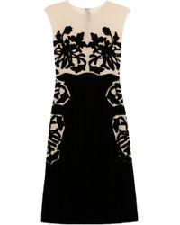 Bottega Veneta Velvet and Silk chiffon Appliquéd Dress - Lyst