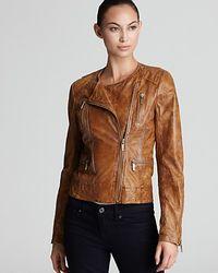 Michael Kors Michael Motorcycle Leather Jacket - Lyst