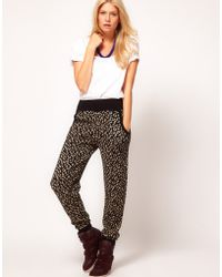 ASOS Collection -  Knitted Jogger in Metallic Leopard - Lyst