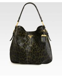 Prada Cavallino Leopard Print Hair Calf Hobo - Lyst