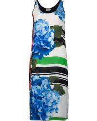 Preen By Thornton Bregazzi Poppy Print Contrast Dress - Lyst