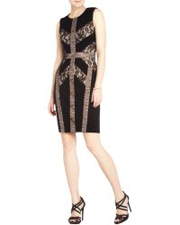 BCBGMAXAZRIA Raina Blocked Lace Sheath Dress black - Lyst