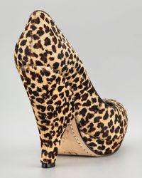Alice + Olivia Robyn Leopardprint Calf Hair Pump - Lyst