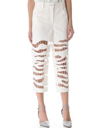 Alexander Wang Zebra Embroidered Crop Jeans - Lyst