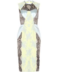Erdem Brynn Snakeskin Print Dress with Lace - Lyst