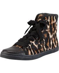 Lanvin Leopardprint Calf Hair Hitop Sneaker - Lyst