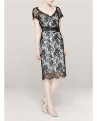Emilio Pucci Vneck Lace Dress - Lyst