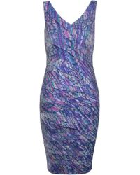 Alexon Printed Shutter Dress - Lyst