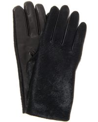 Agnelle Moka Calf Hair and Leather Gloves - Lyst