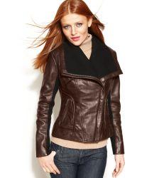 Michael Kors Leather Knittrim Motorcycle Jacket - Lyst