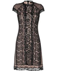 Collette dinnigan lace dresses